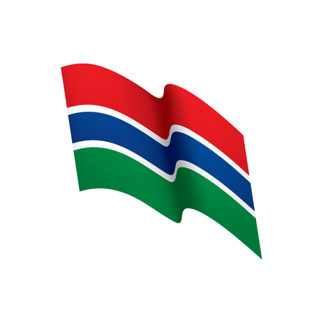 Gambia flag vector illustration.