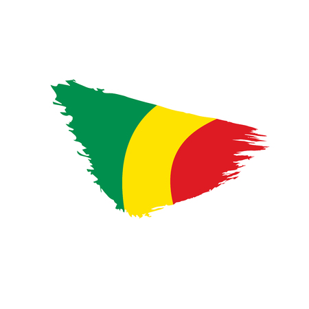 Congo flag, vector illustration