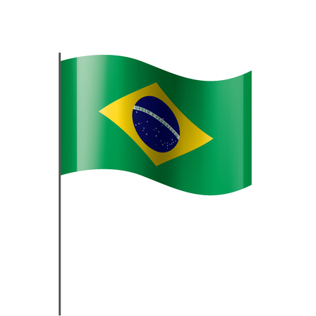 Brazil flag, vector illustration on a white background