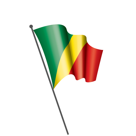 Congo national flag, vector illustration on a white background