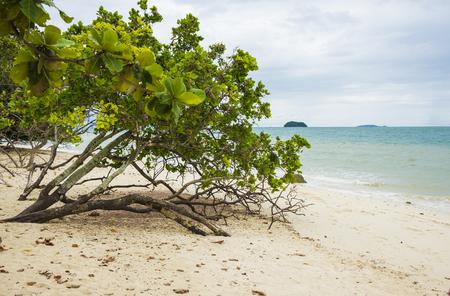 Rang Yai island beach, Thailand. Day 18 December 2018