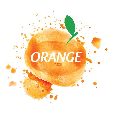 Vector orange juice splatter on white background