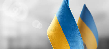 Small national flags of the Ukraine on a light blurry background