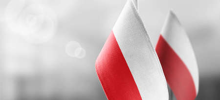 Small national flags of the Poland on a light blurry background