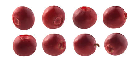 A set of red cranberry berries. Isolated on a white background