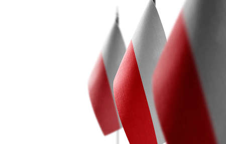 Small national flags of the Poland on a white background
