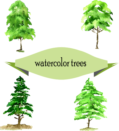 firry: set of green watercolor spruce. vector illustration. Illustration