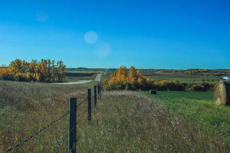 Fence line on a farmers field, Foothills County, Alberta, Canada
