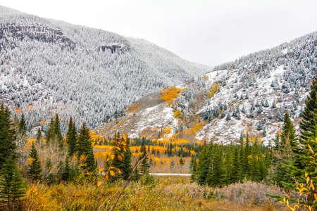 First snow, Kananaskis, Country, Alberta 版權商用圖片