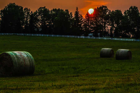 Sunrise over a hay field, Springbank, Alberta,