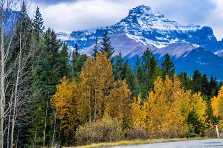 Taken along the ice field parkway, Banff National Park, Alberta, Canada