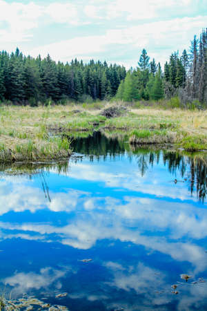 From the roadside, Riding Mountain National Park,Manitoba, Canada Stock fotó