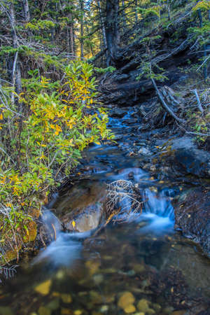 Sheep River falls in Sheep River Provincial Park, Alberta, Canada