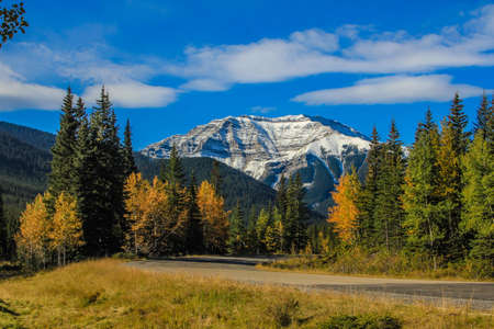From the roadside, Sheep River Provincial Recreation Area, Alberta, Canada