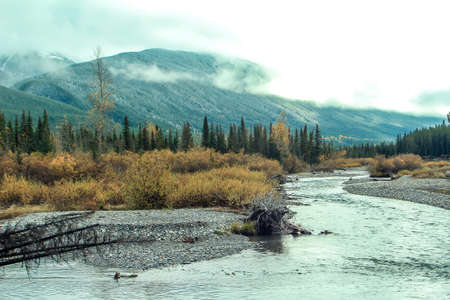 A view from the roadside Kananaskis County, Alberta, Canada
