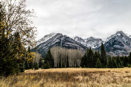 Heavy clouds hang over the mountains on a walk through hillsdale meadows in banff