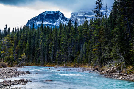 Waterfowl lake and its blue clear waters are home to moose, ducks and great fishing in Banff