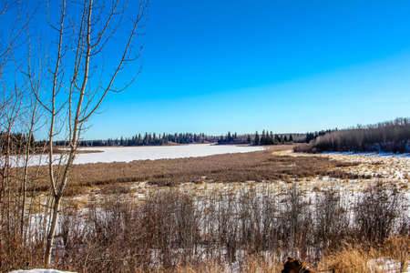 snow convered astoria lake in the early throws of winter in elk island