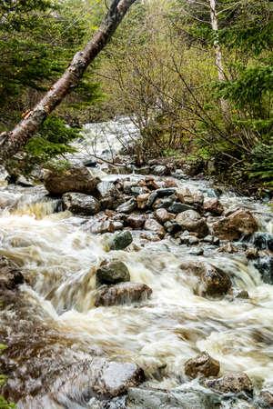 Mattie Mitchell Creek, Gros Morne National Park, Newfoundland, Canada