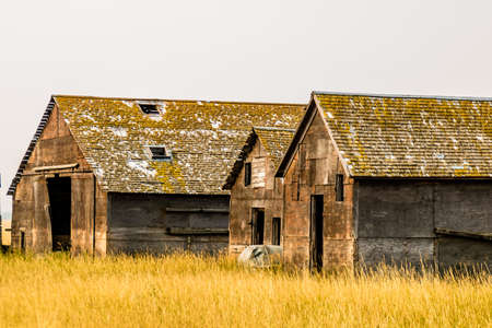 Abondoned farm out buildings on the prairies, Alberta, Canada Banco de Imagens
