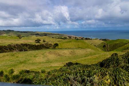 A stroll around the grounds, Manakua Heads, Auckland, New Zealand 版權商用圖片