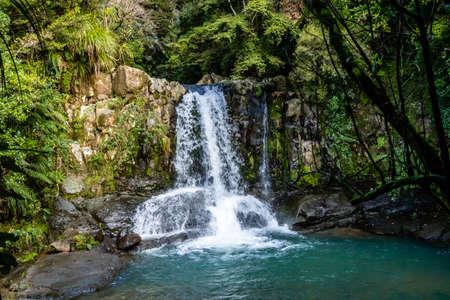 Waiau falls is a refreshing place to take a dip, Waiau Kauri Grove, Coromandel, New Zealand