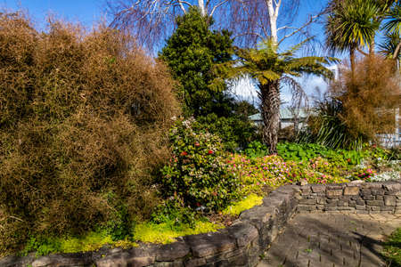 Scenes from a stroll around Coromandel, New Zealand