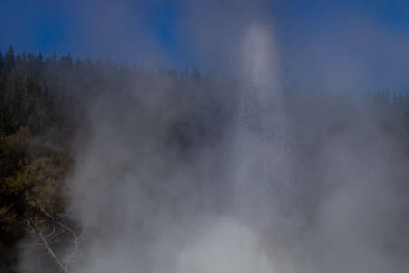 Lady Knox Geyser, Wai-O-Tapu Thermal Wonderland, Rotarua, New Zealand 写真素材