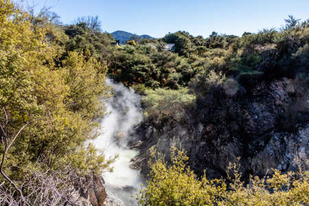 The Waikato river flows through the Geo-Thermal park, Wai-O-Tapu, Rotorua, New Zealand