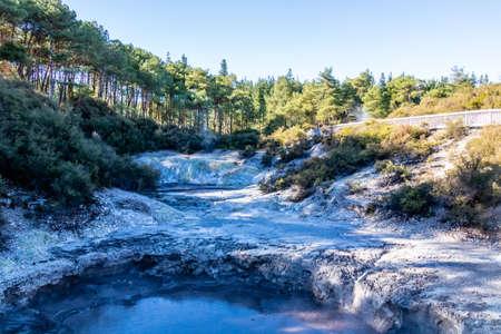 Sulphur and carbon pool in the park, Wai-O-Tapu, Rotorua, New Zealand