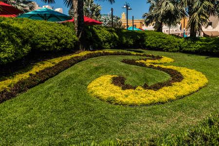 Views while walking around Busch Gardens, Tampa, Florida, United States Stock Photo