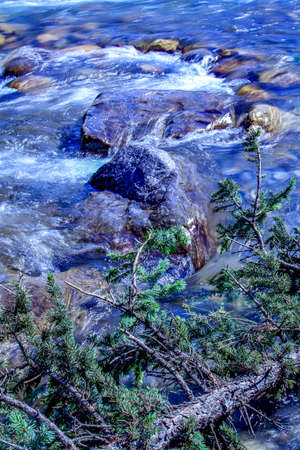 Elbow river flowing hard and fast. Elbow river Provincial Recreation Area, Alberta, Canada Stock Photo