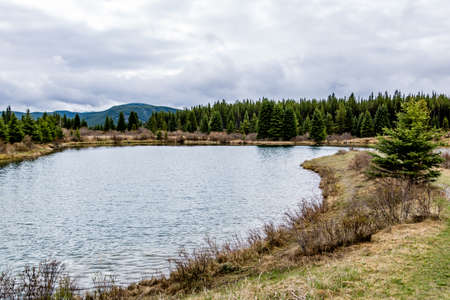The still waters of Elk Pond. Elk Creek Fish Pond Provincial Recreation Area, Alberta, Canada Stock Photo
