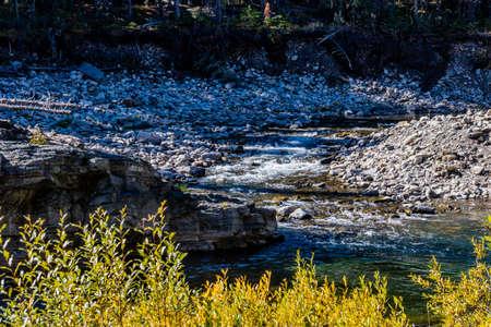 Water flows along the Livingston River. Livingsting Falls Provincial Recreation Area, Alberta, Canada