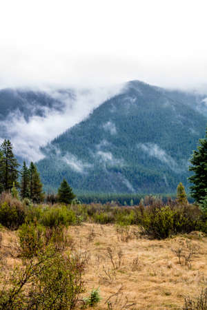 Low clouds hover over the park. Seven Mile Provincial Recreation Area, Alberta, Canada Stock Photo