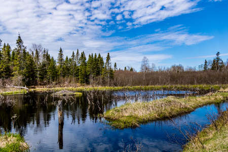 The Humber River wanders through the park. Sir Richard Squires Provincial Park, Newfoundland, Canada Stock Photo