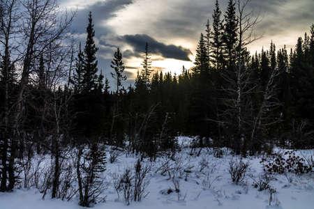 Sun peaking through the clouds. Waiprous Creek Provincial Recreation Area, Alberta, Canada