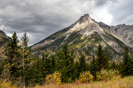 Fall colours at the base of Mount Allen. Bow Valley Wilderness Area, Alberta, Canada