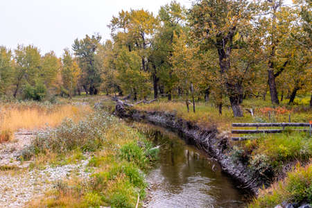 Highwood River flows through the county. Foothills County, Alberta, Canada Banque d'images