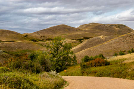 Road into the badlands. Rosedale, Alberta, Canada Banque d'images