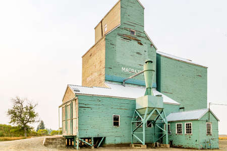 Majestic wooden giants of the prairies some are still standing as an icon of an era long gone.