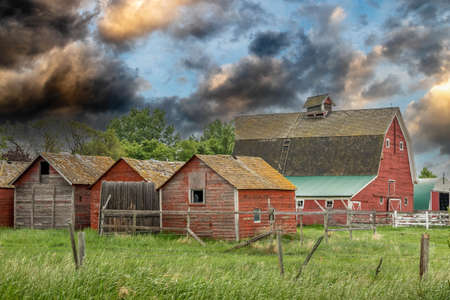 Rustic out buildings and stock in Huxley Alberta Canada Banque d'images