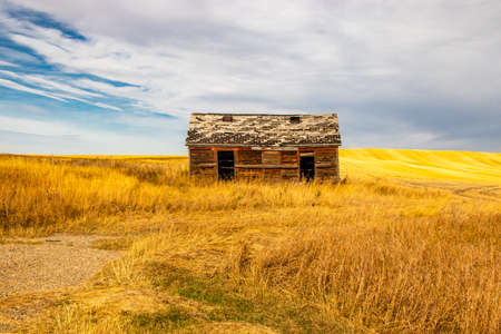 All that is left of families home stands proud in a what field, allowing everyone a glimpse of the past in three Hills, Alberta, Canada