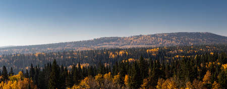 Fall colours in the Hamlet. Benchlands, Alberta, Canada Banque d'images