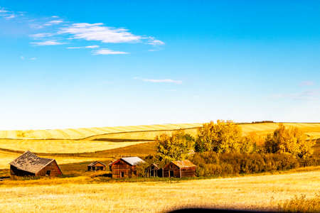 Rustic farm out buildings. Kneehill County, Alberta, Canada Banque d'images