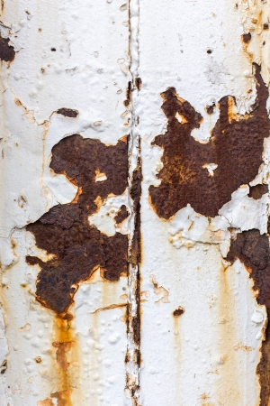 Close up of white paint pealing off of metal with rust stains photo