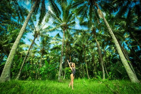 ner: Beautiful brunette wint perfect body ner a big palmas in the Bali. Indonesia. Stock Photo