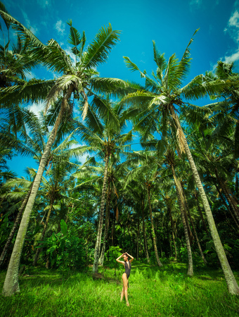 ner: Beautiful brunette wint perfect body ner a big palmas in the Bali. Indonesia Stock Photo