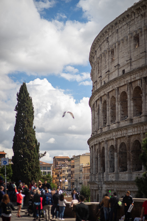 view on the Great Roman Colosseum, Coliseum, Colosseo, also known as the Flavian Amphitheatre. Rome. Italy. Europe Reklamní fotografie