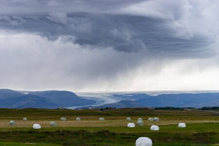 Bale of fodder grass wrapped in white plastic lying on the field in Iceland.